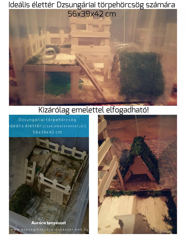 Orosz kolykok a magasban 496 - Ide Lis Kisebb V Ltozat 56x39x42 Cm 65 L Kisebb Doboz Kiz R Lag Emelettel Elfogadhat Http Www Ikea Com Hu Hu Catalog Products 00102975