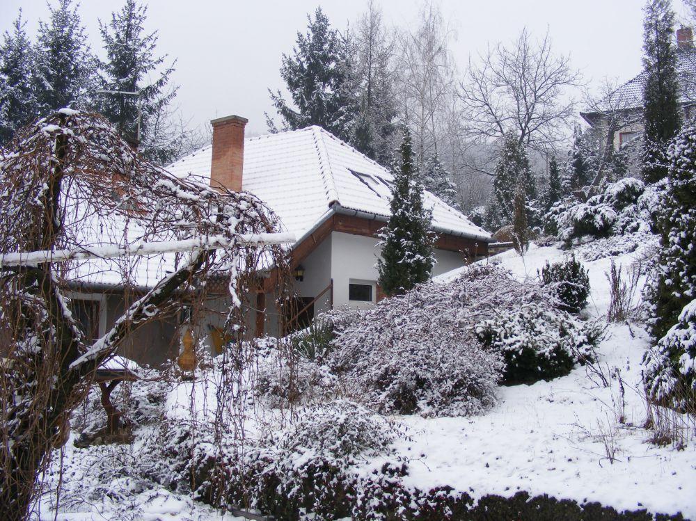 A kácsi kapusi kert télen