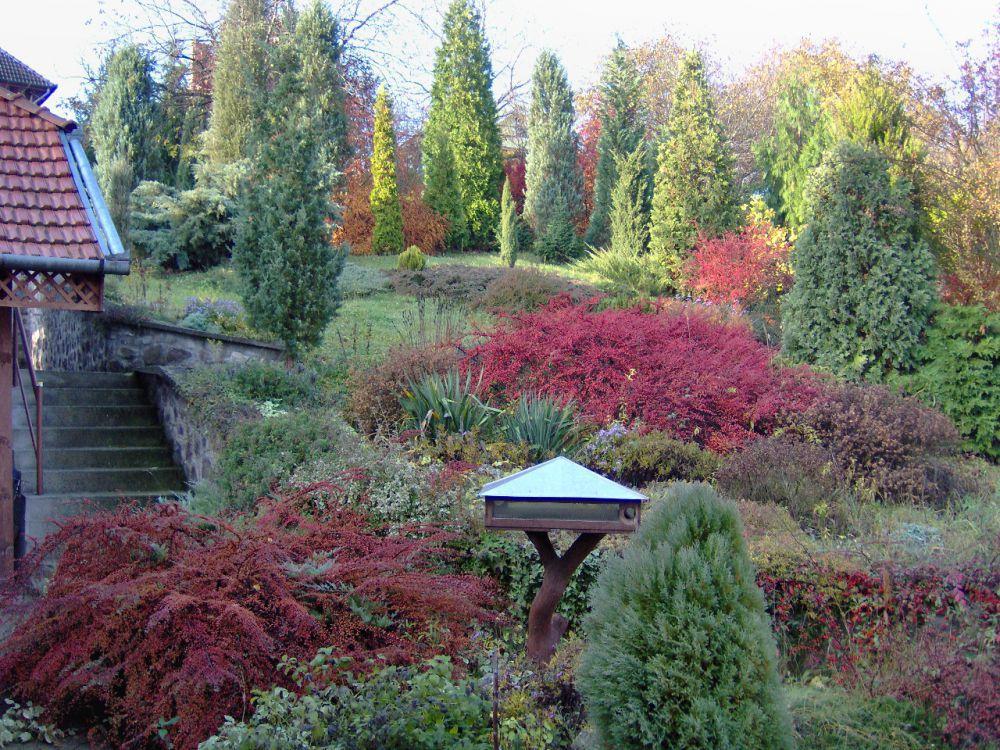A kácsi Kapusi kert ősszel